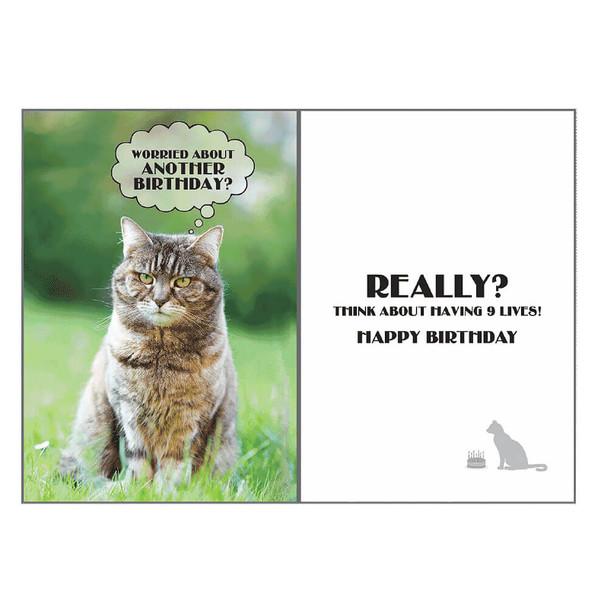 Dog Speak Birthday Card - Cat Nine Lives
