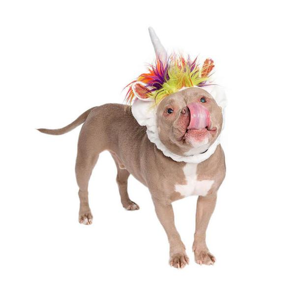 Pet Krewe Unicorn Dog Costume