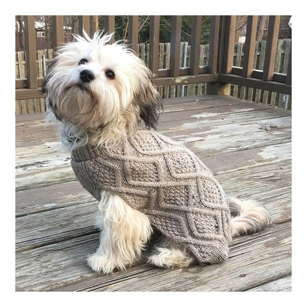 Fashion Pet Fisherman-Style Dog Sweater