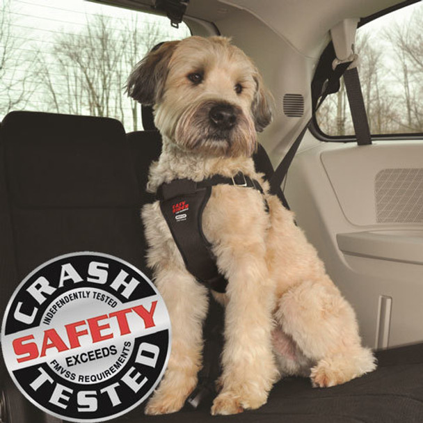 Easy Rider Car Harnesses