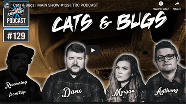 Cats & Bugs | MAIN SHOW #129 | TRC PODCAST