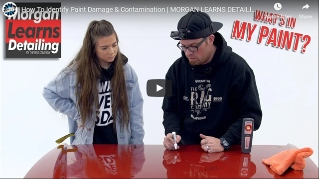 How To Identify Paint Damage & Contamination | MORGAN LEARNS DETAILING