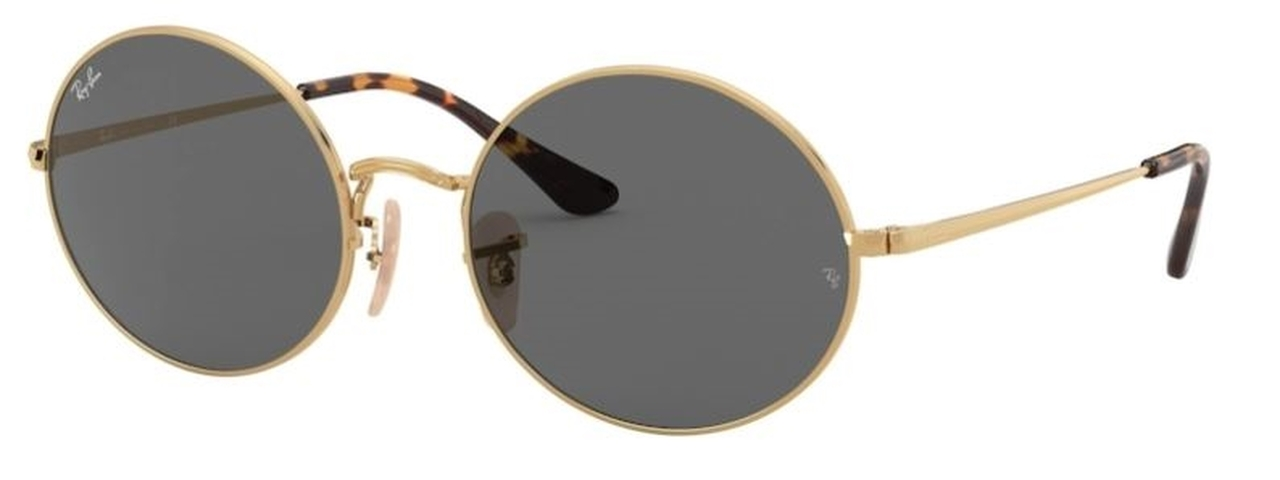 Shop for Ray-Ban 0RB1970 Oval