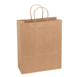 Paper Bag Large Tall 280wx120dx350h Shopper Recycled x 200