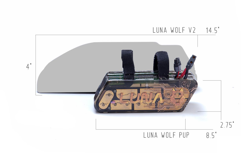 wolf-pup-vs-wolf.jpg