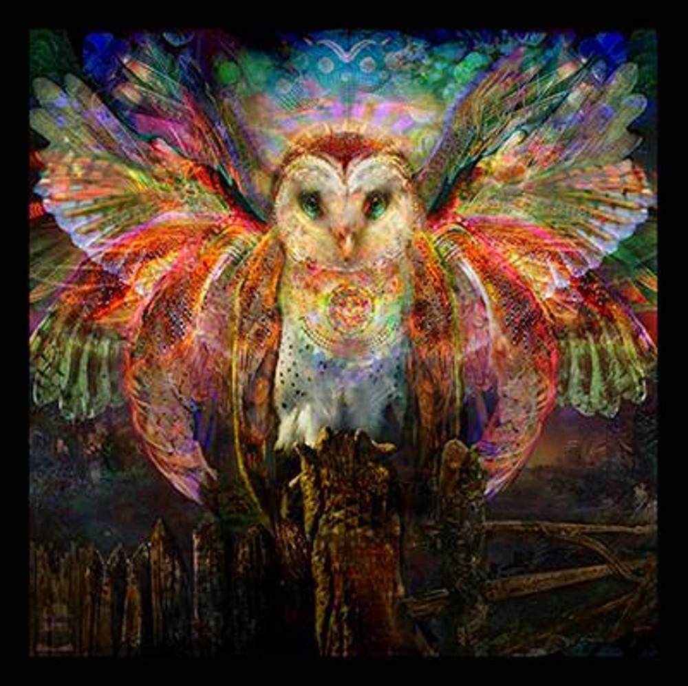 """Jumbie Art Owl Hologram 22"""" x 28"""""""
