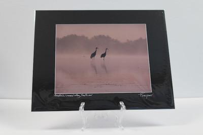 Pre-matted Black - Sandhill Cranes in Fog, Fox River