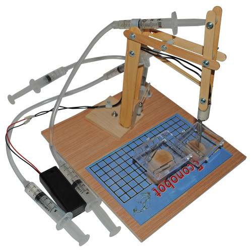 KELVIN® Econobot™ with Craft Sticks
