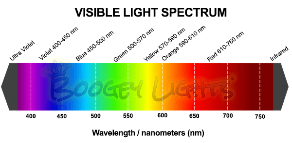 Visible Light Spectrum Chart