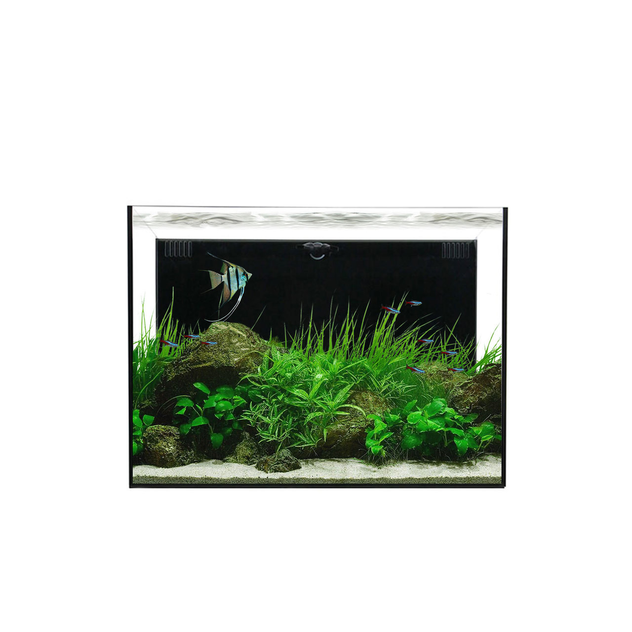 Waterbox Freshwater All-In-One 30.2