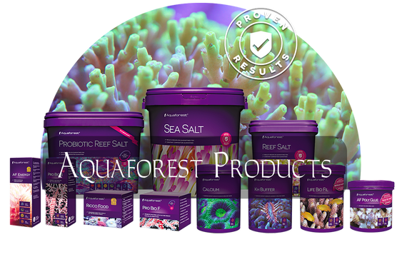 Aquaforest Salt & Supplements