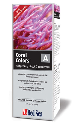 Red Sea Coral Colors A