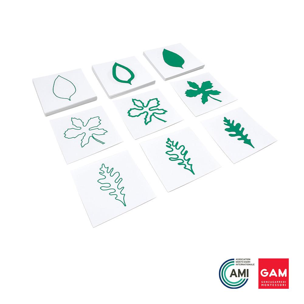 Leaf Cards by Gonzagarredi Montessori