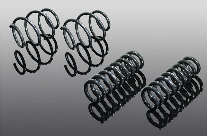 AC Schnitzer Suspension springs for BMW X3 (G01) xDrive 20i, 30i, 20d
