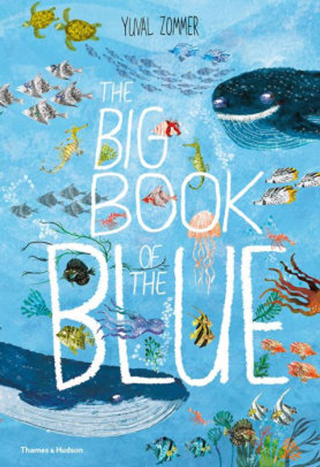 BIG BOOK OF THE BLUE HC