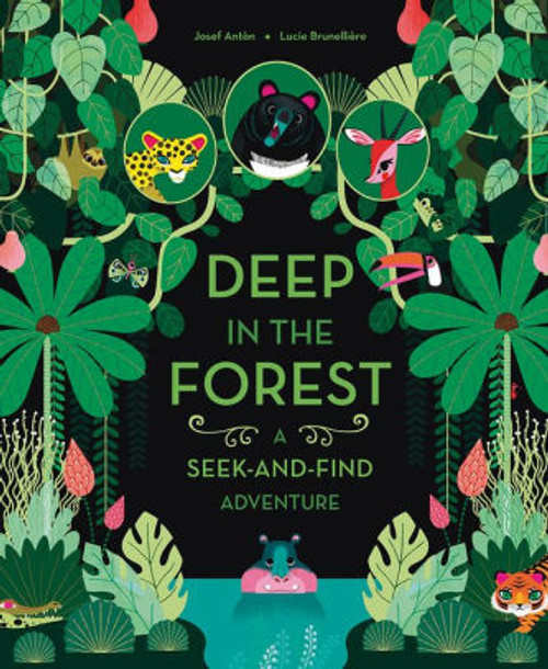 DEEP IN FOREST SEEK & FIND SC