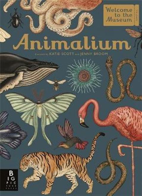 ANIMALIUM HC REVISED ED