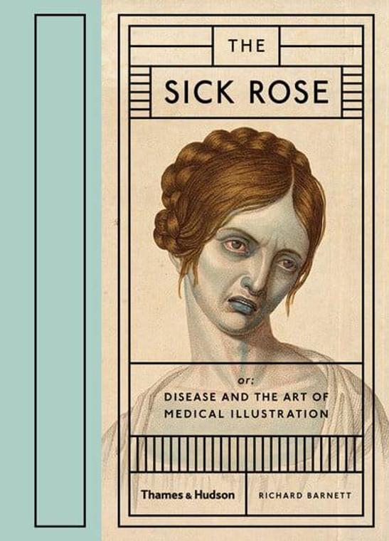 SICK ROSE HC
