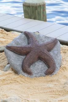 "4"" Deep Sea Starfish"