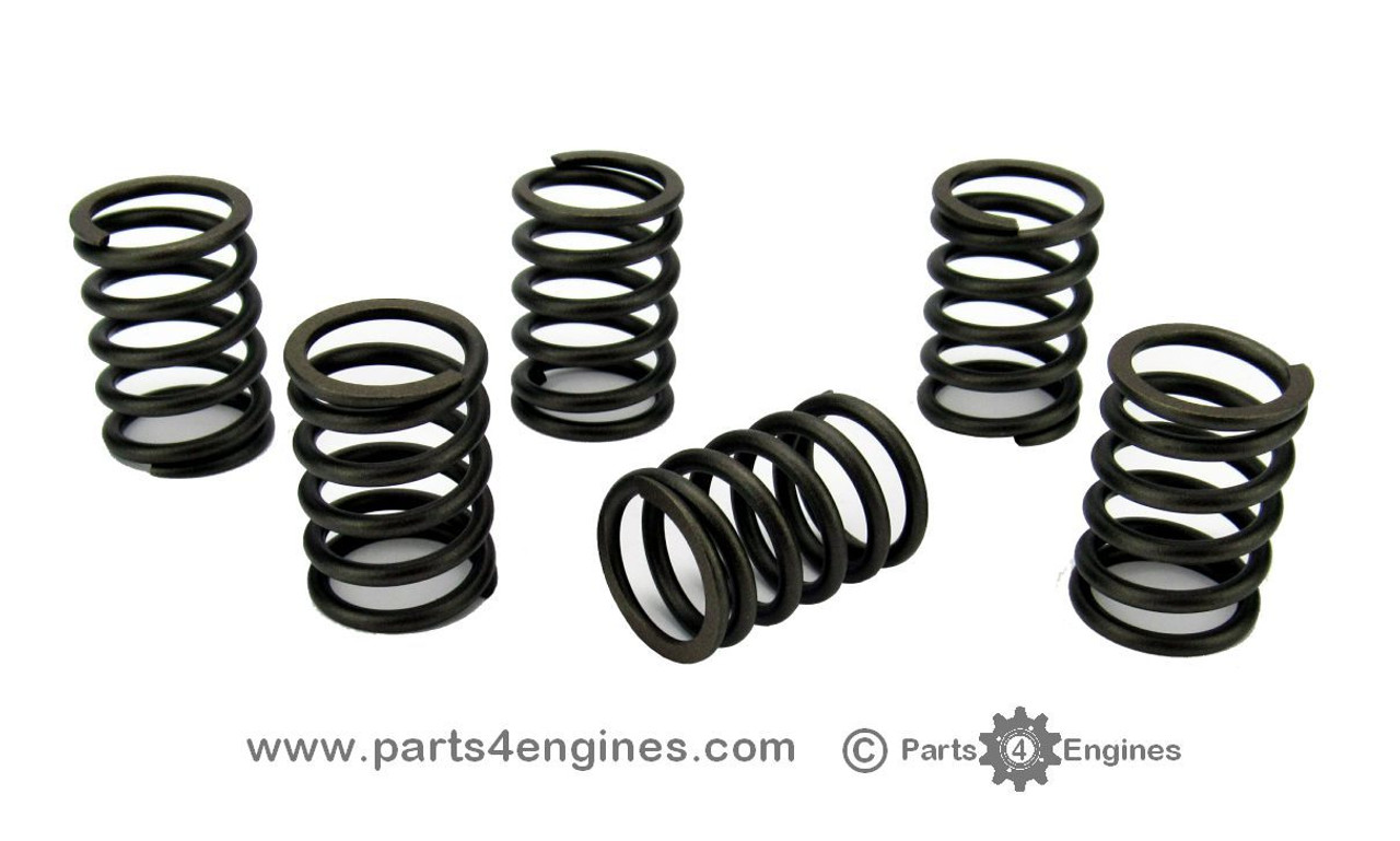 Volvo Penta MD2040 valve spring set of 6