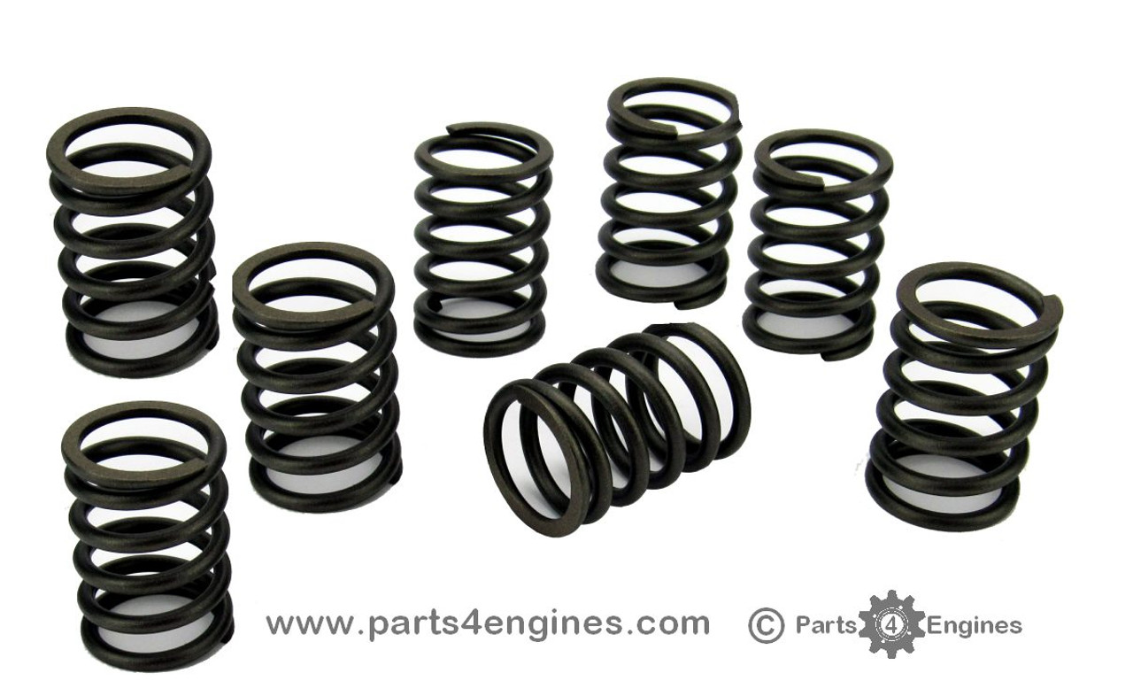 Volvo Penta D2-40 Valve Springs - parts4engines.com