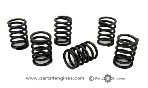 Volvo Penta D1-30 Valve Spring set - parts4engines.com