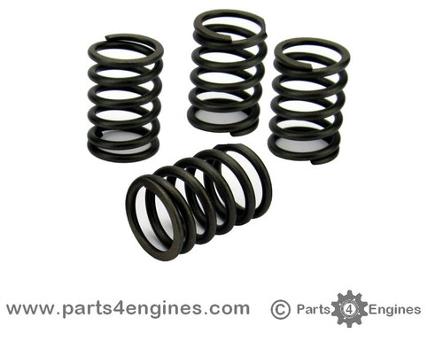 Volvo Penta D1-13 Valve Spring set - parts4engines.com