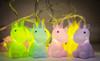 Baby Unicorns Fairy Lights String *
