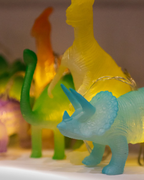 Dinosaurs Fairy Lights String *