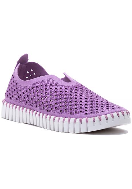 c017b2708305 WOMEN - Sneakers - Flat - Page 1 - Jildor Shoes