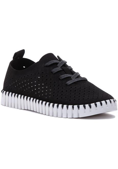 93551c6c126e WOMEN - Sneakers - Flat - Page 1 - Jildor Shoes