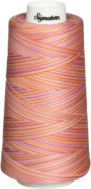 Signature40 - Cotton Candy - F154 - Cone - 3000 Yds - 100% Variegated Cotton Quilting Thread