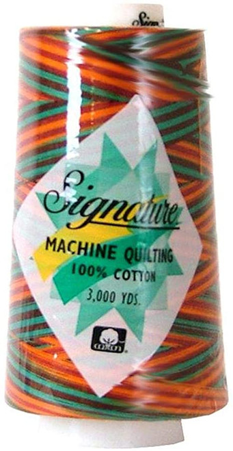 Signature40 - Southwest - F256 - Cone - 3000 Yds - 100% Variegated Cotton Quilting Thread