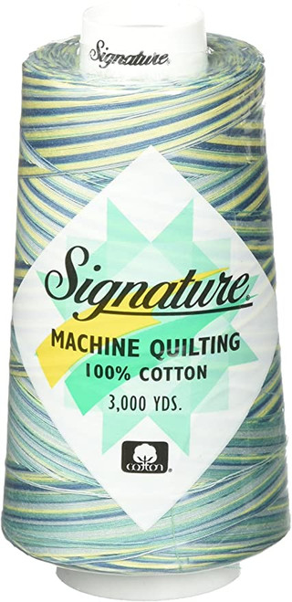 Signature40 - St. Thomas - F151 - Cone - 3000 Yds - 100% Variegated Cotton Quilting Thread