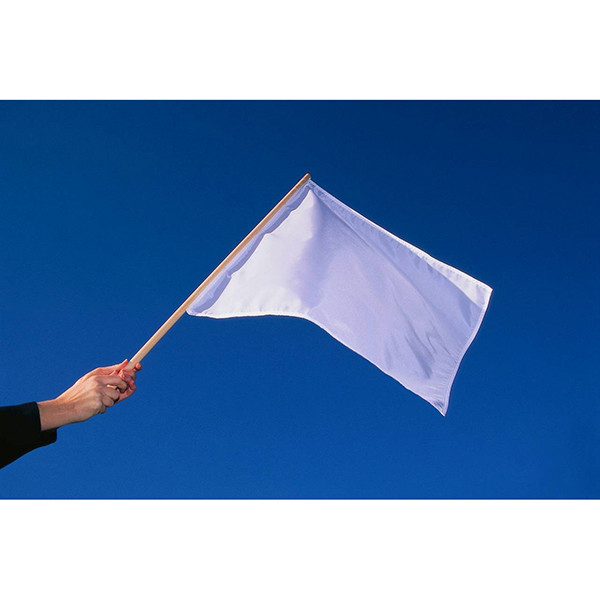 Car Wash Business: One Lap To Finish Auto Racing Flag