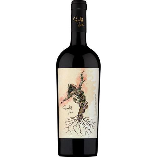 Scarlet Vine Selected Hillside Vineyards Valle de Maipo Cabernet
