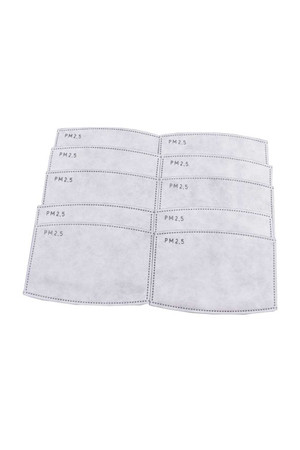 Wholesale 10 Pack - PM2.5 Replacement Filters