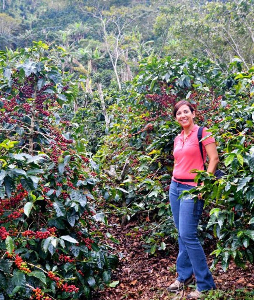 Las Brumas - Nicaragua