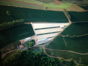 Fazenda Santa Luzia - Para Ela Reserve Micro-Lot - Brasil