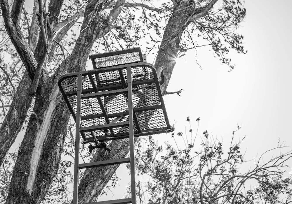 Tree Stand Locations, Tips and Hanging Tactics | JX3 Outdoors Saddle Hunting Products