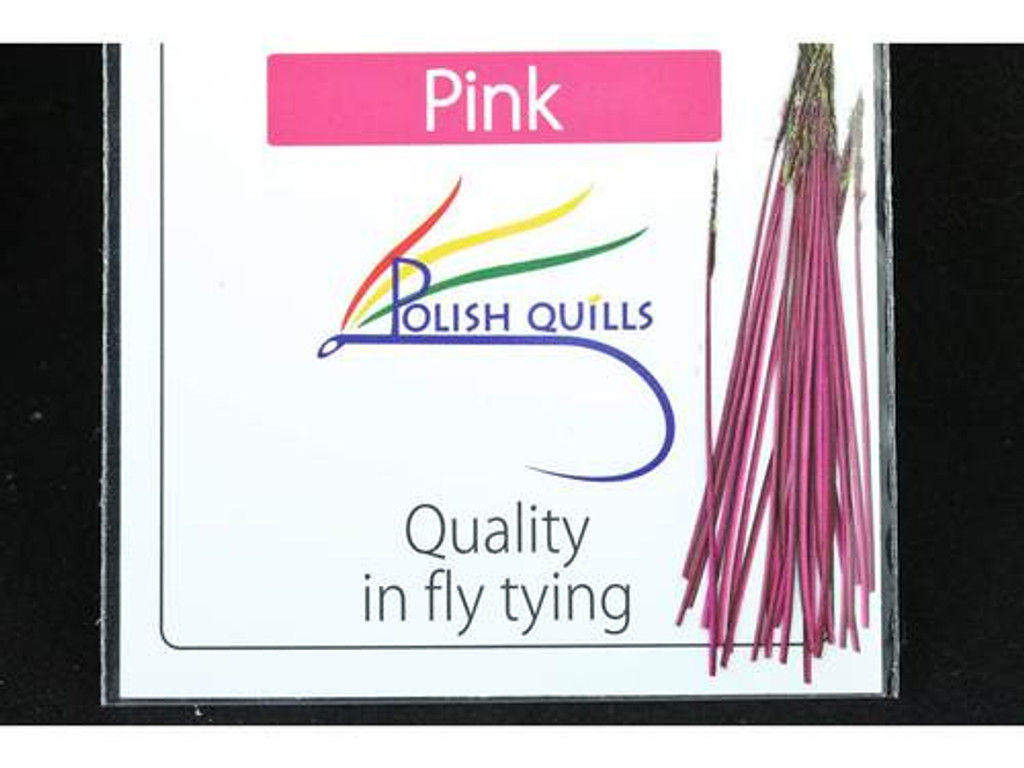 Polish Quills stripped peacock quills