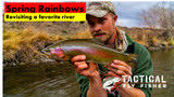 Spring Rainbows: Revisiting a Favorite River