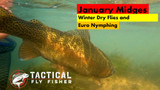 Our New YouTube Video January Midges