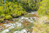 World Fly Fishing Championship 2019 in Tasmania: Session 5 on the Meander River