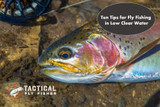 Ten Tips for Fly Fishing in Low and Clear Water