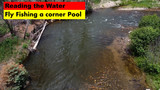 Reading the Water: Fly Fishing a Corner Pool