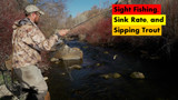 YouTube Video: Sight Fishing, Sink Rate, and Sipping Trout