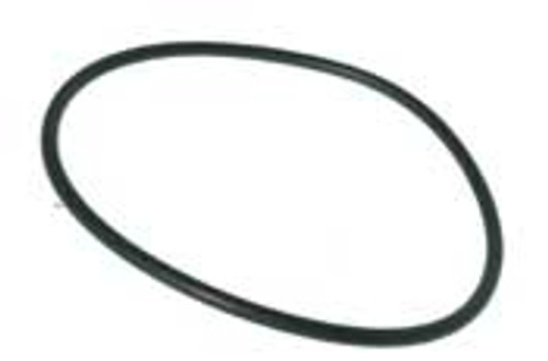 BAPTISTRY HEATERS | INLINE FILTER LID Oring | 3270-3293