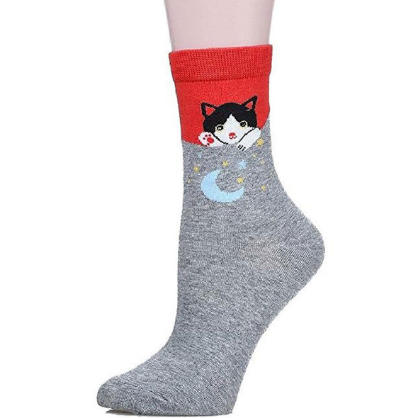 Cat Wide Awake with Moon Socks -  CC119