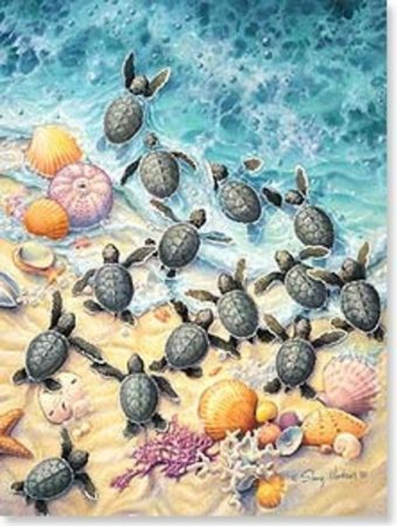 Sea Turtles Birthday Card - BDG43712